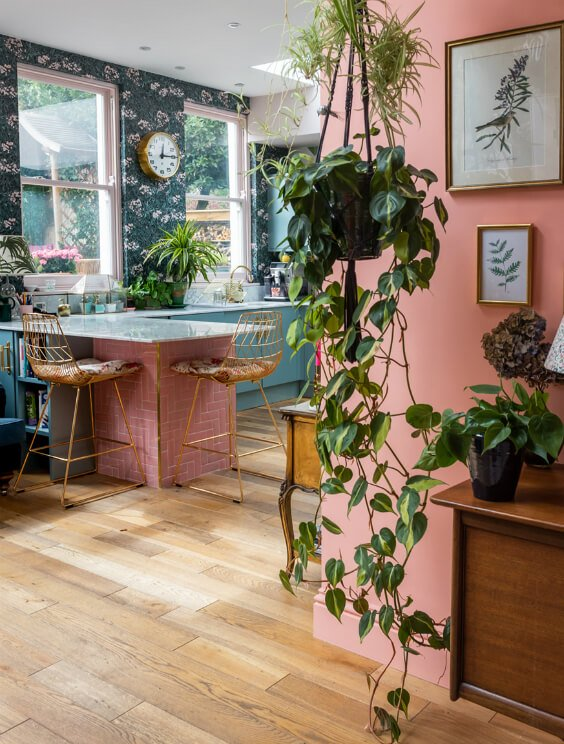 interior design for a kitchen with pink and green walls and with a lot of plants