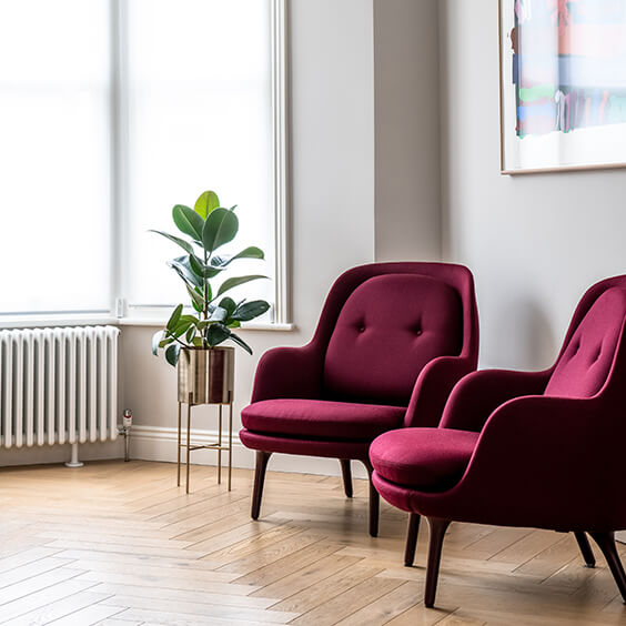 residential interior design for light and spacious receprion room with designer burgundy velvet armchairs and Rubber plant in Bromley, London